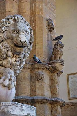Photograph - Lions And Pigeons by JAMART Photography