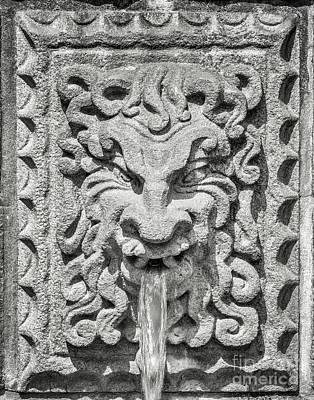 Photograph - Lions Head Fountain by Antony McAulay