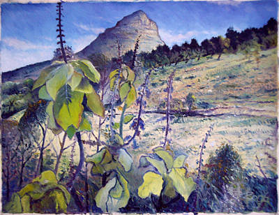 Lions Head From Signal Hill Cape Town  South Africa 2006  Art Print by Enver Larney