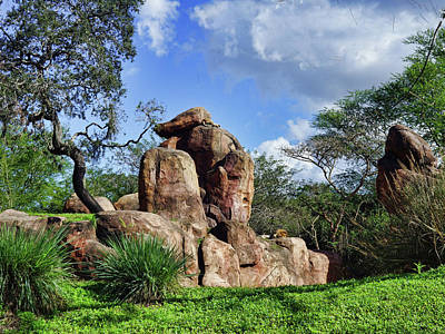 Photograph - Lions On The Rock by B Wayne Mullins