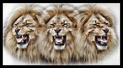 Digital Art - Lions Roar II by Jim Fitzpatrick