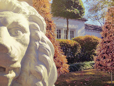 Photograph - Lions View Of Graceland by JAMART Photography
