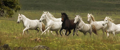 Photograph - Lipizzan Band On The Run  by Wes and Dotty Weber