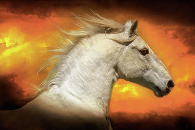Photograph - Lipizzan In The Clouds by Wes and Dotty Weber