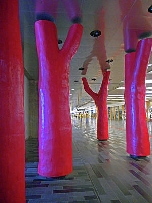 Photograph - Lipstick Forest 4 by Ron Kandt