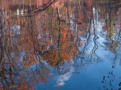 Photograph - Liquid Autumn by Jim DeLillo
