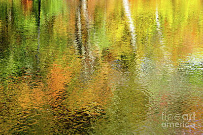 Photograph - Liquid Autumn by Kimberly Nyce
