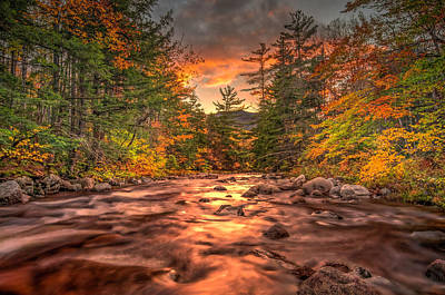 Photograph - Liquid Gold Of New Hampshire by Thomas Gaitley