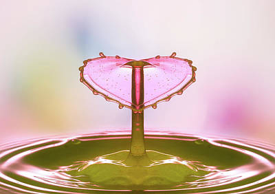 Photograph - Liquid Heart by Gabriela Neumeier