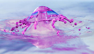 Photograph - Liquid Mushroom by Trish VanHousen