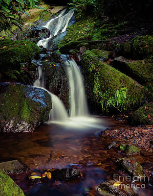 Photograph - Lismore Waterfall 2 by Marc Daly