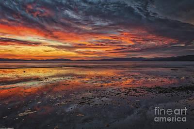 South Lake Tahoe Photograph - Listen by Mitch Shindelbower