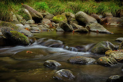 Photograph - Listen To The Beauty by Mike Eingle