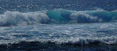 Photograph - Listen To The Ocean by Pamela Walton