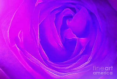 Purple Rose Photograph - Listen To Your Heart by Krissy Katsimbras