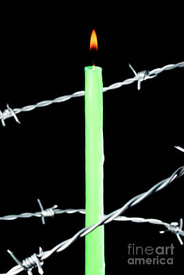 Lit Candle Surrounded By Barbed Wire Art Print by Sami Sarkis
