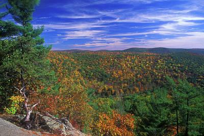 Photograph - Litchfield Hills Foliage by John Burk
