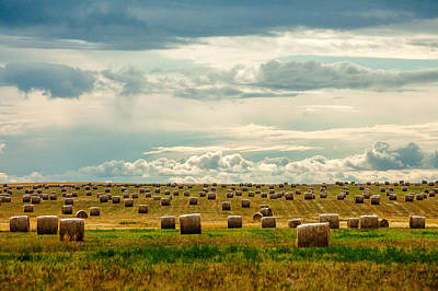 Bale Photograph - Littered With Bales by Todd Klassy