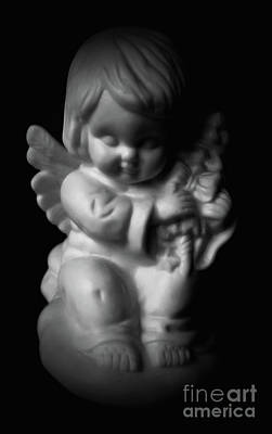 Photograph - Little Angel by Jasna Dragun