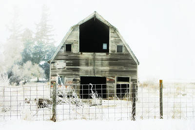 Country Cottage Photograph - Little Barn by Julie Hamilton