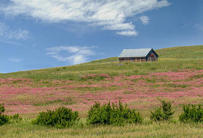 Photograph - Hillside Barn by Patti Deters
