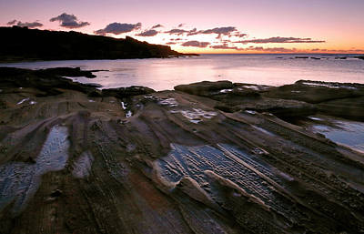 Photograph - Little Bay Dawn by Nicholas Blackwell