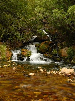 Photograph - Little Big Creek by Scott Read