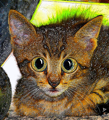Domestic Cats Digital Art - Little Big Eyes by David Lee Thompson