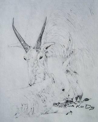 Little Billy Art Print by Ken Day