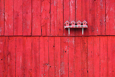 Barn Board Photograph - Little Bird Houses by Todd Klassy