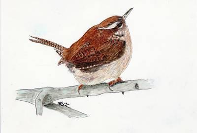 Carolina Wren Painting - Little Bit by Wanda Crowder