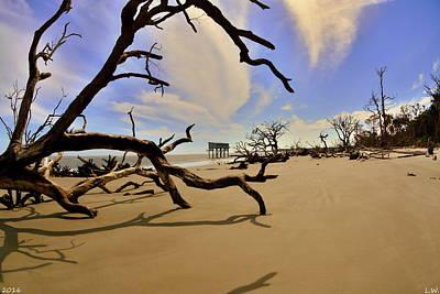 Photograph - Little Blue And Driftwood Beach by Lisa Wooten