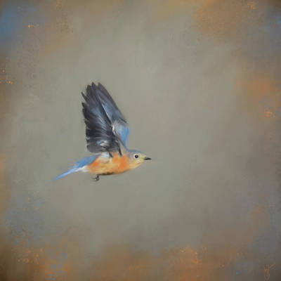 Painting - Little Blue Flyer 1 by Jai Johnson