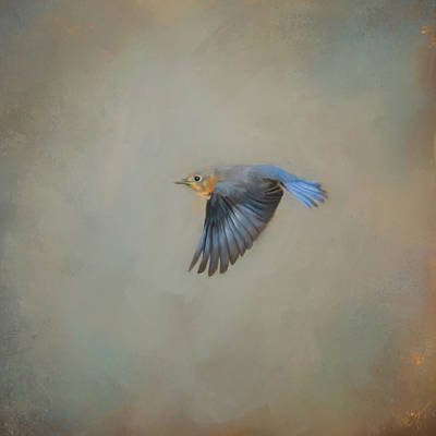 Painting - Little Blue Flyer 2 by Jai Johnson