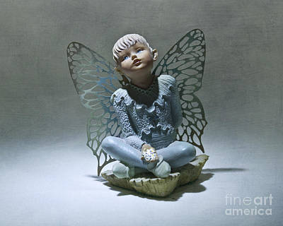 Photograph - Little Boy Blue Fairy by Terri Waters