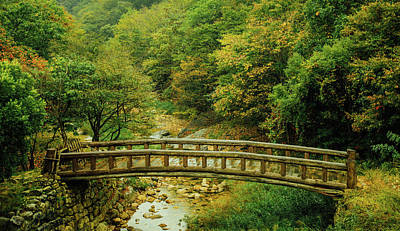 Photograph - Little Bridge by Hyuntae Kim