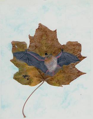 Little Brown Bat Art Print by Ralph Root