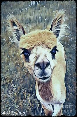 Llama Mixed Media - Little Brown Llama by Caitlin Lodato