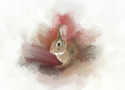 Photograph - Little Bunny by Mary Timman