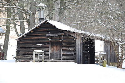 Target Threshold Nature Royalty Free Images - Little Cabin Royalty-Free Image by Eric Liller