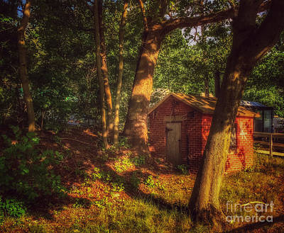 Photograph - Little Cabin In The Woods - Sunset by Miriam Danar