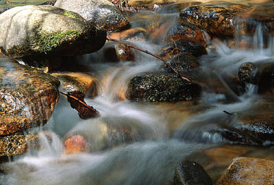 Photograph - Little Cascade by John Farley