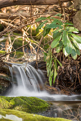 Photograph - Little Cascade by Sara Hudock