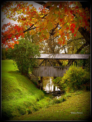 Photograph - Little Covered Bridge by Trina Prenzi