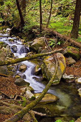 Photograph - Little Creek by Gary Brandes