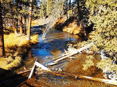 Photograph - Little Creek Of The Yellowstone by Adam Cornelison