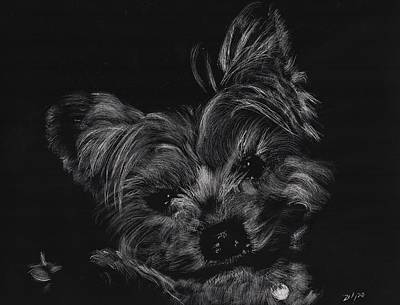 Drawing - Little Cutey by Zilpa Van der Gragt