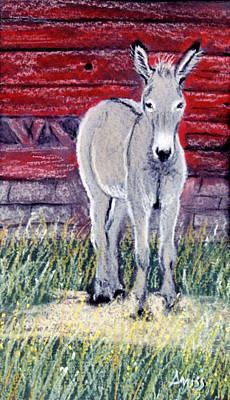 Pastel - Little Donkey by Jan Amiss