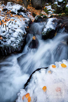 Photograph - Little Fall, Little Winter On Boulder Creek by Ronda Kimbrow