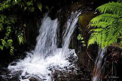 Photograph - Little Falls by Christopher Holmes